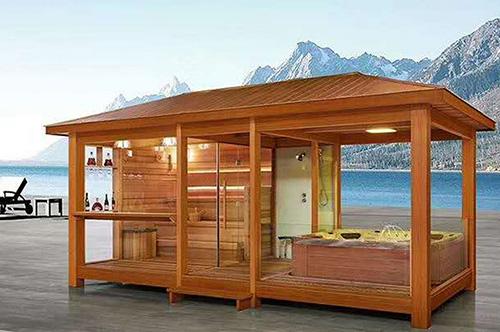 sauna combined steam room